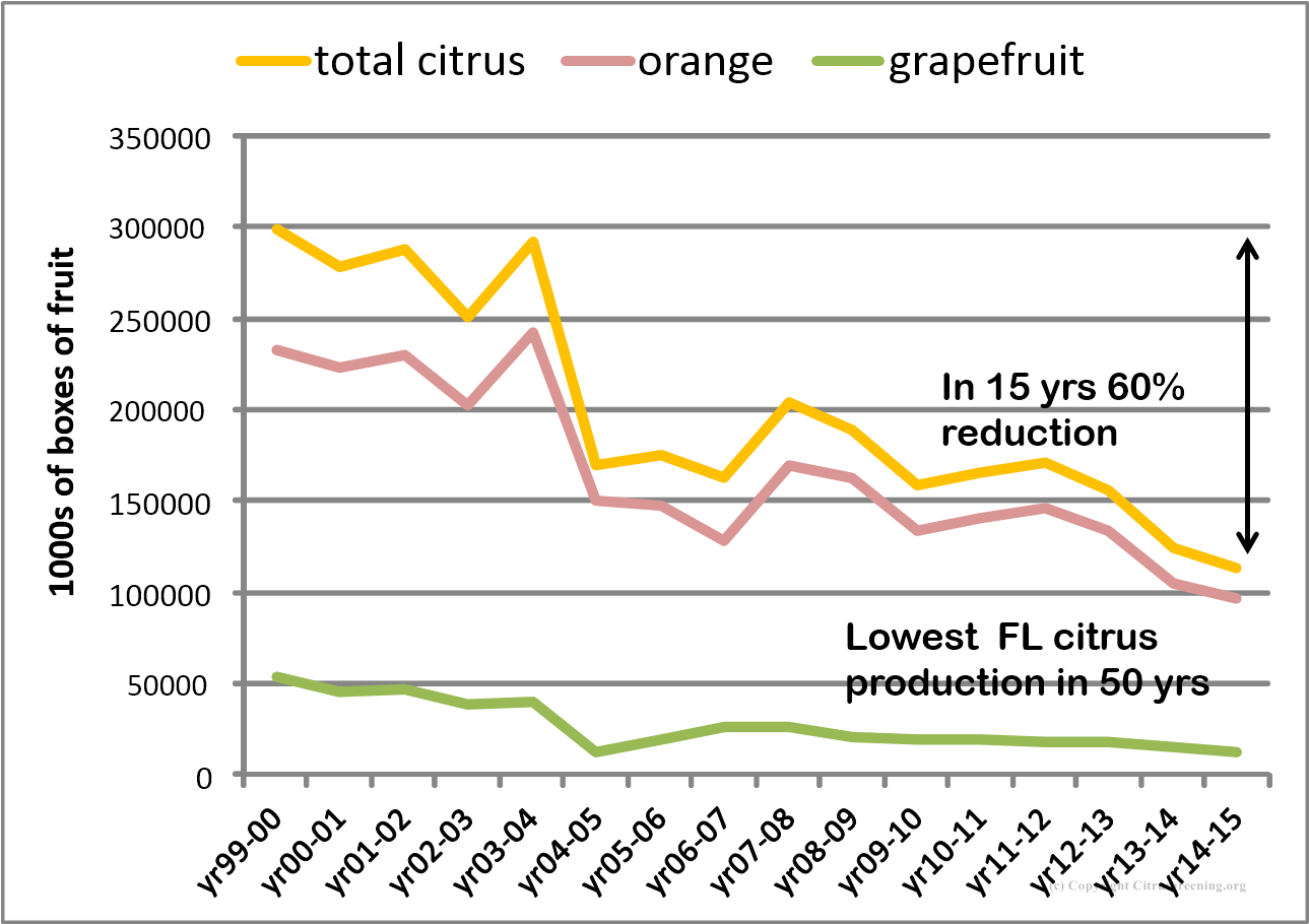 Citrus production 1999-2015
